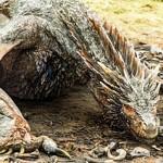 [Staff Picks] Game Of Thrones Season 5